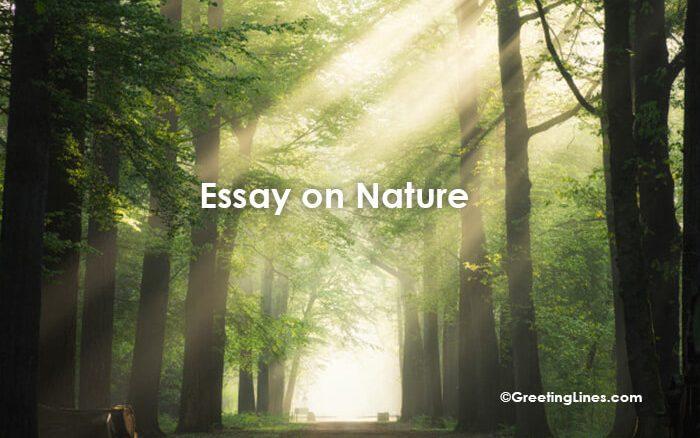 Essay on Nature1