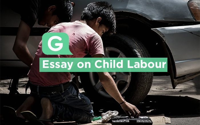 Essay on child labour